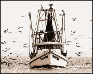 Shrimp Boat photograph by photographer Kim Slonaker on andreareadsamerica.com
