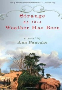 Strange as this weather has been book cover